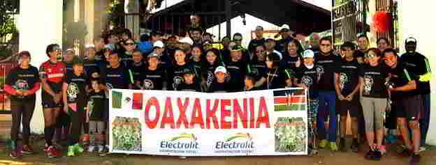 oaxakenia